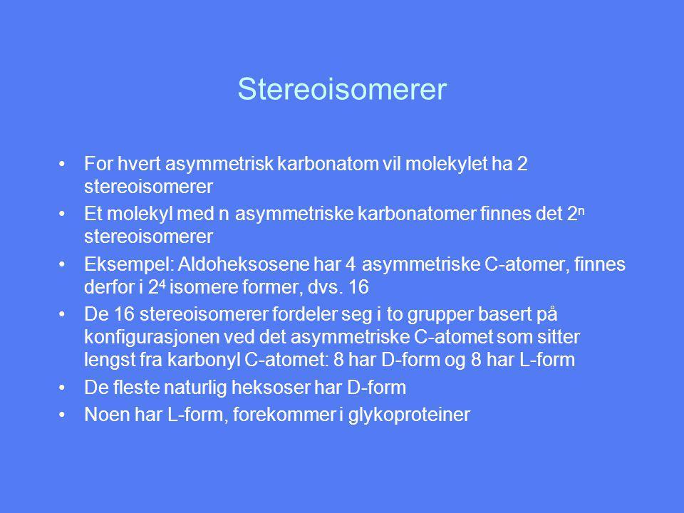 Stereoisomerer For hvert asymmetrisk karbonatom vil molekylet ha 2 stereoisomerer Et molekyl med n asymmetriske karbonatomer finnes det 2 n stereoisomerer Eksempel: Aldoheksosene har 4 asymmetriske C-atomer, finnes derfor i 2 4 isomere former, dvs.