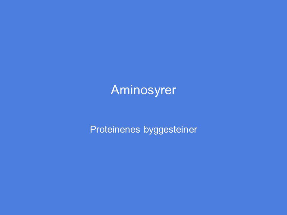 Aminosyrer Proteinenes byggesteiner