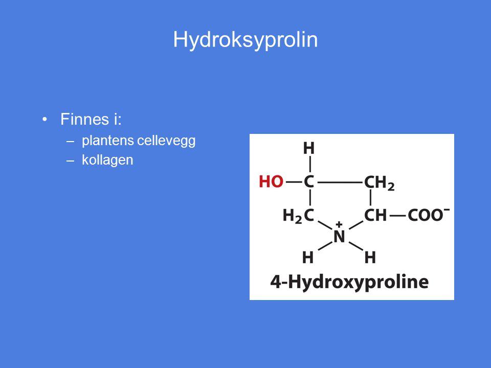 Hydroksyprolin Finnes i: –plantens cellevegg –kollagen