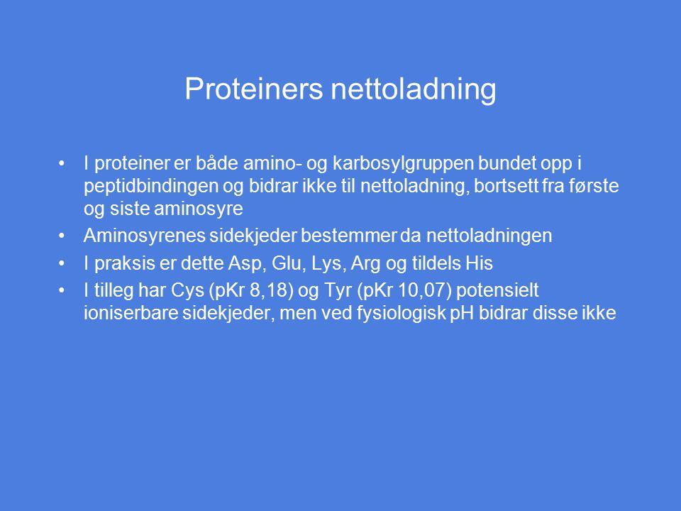 Proteiners nettoladning I proteiner er både amino- og karbosylgruppen bundet opp i peptidbindingen og bidrar ikke til nettoladning, bortsett fra først