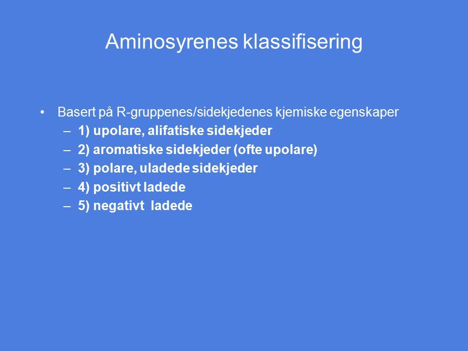 Aminosyrenes klassifisering Basert på R-gruppenes/sidekjedenes kjemiske egenskaper –1) upolare, alifatiske sidekjeder –2) aromatiske sidekjeder (ofte