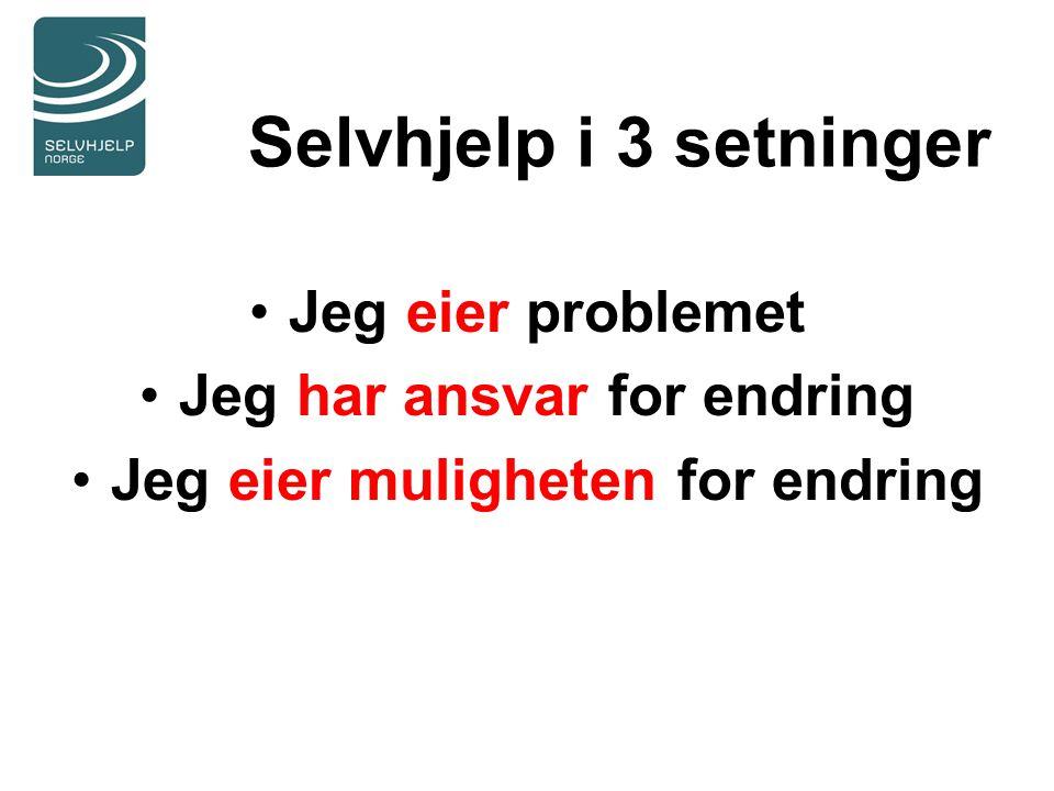 Selvhjelp i 3 setninger Jeg eier problemet Jeg har ansvar for endring Jeg eier muligheten for endring