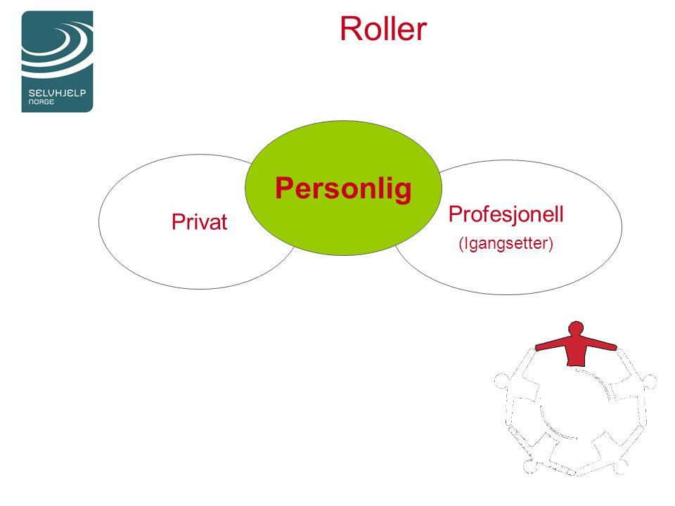 Roller Privat Profesjonell (Igangsetter) Personlig