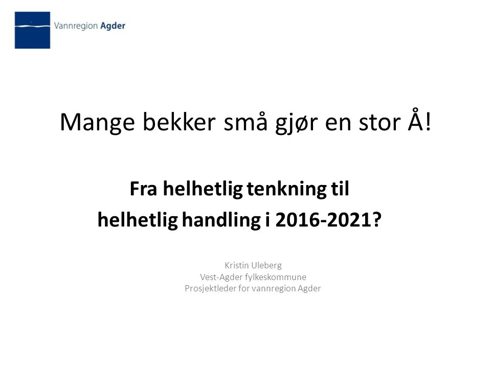 Mange bekker små gjør en stor Å. Fra helhetlig tenkning til helhetlig handling i 2016-2021.