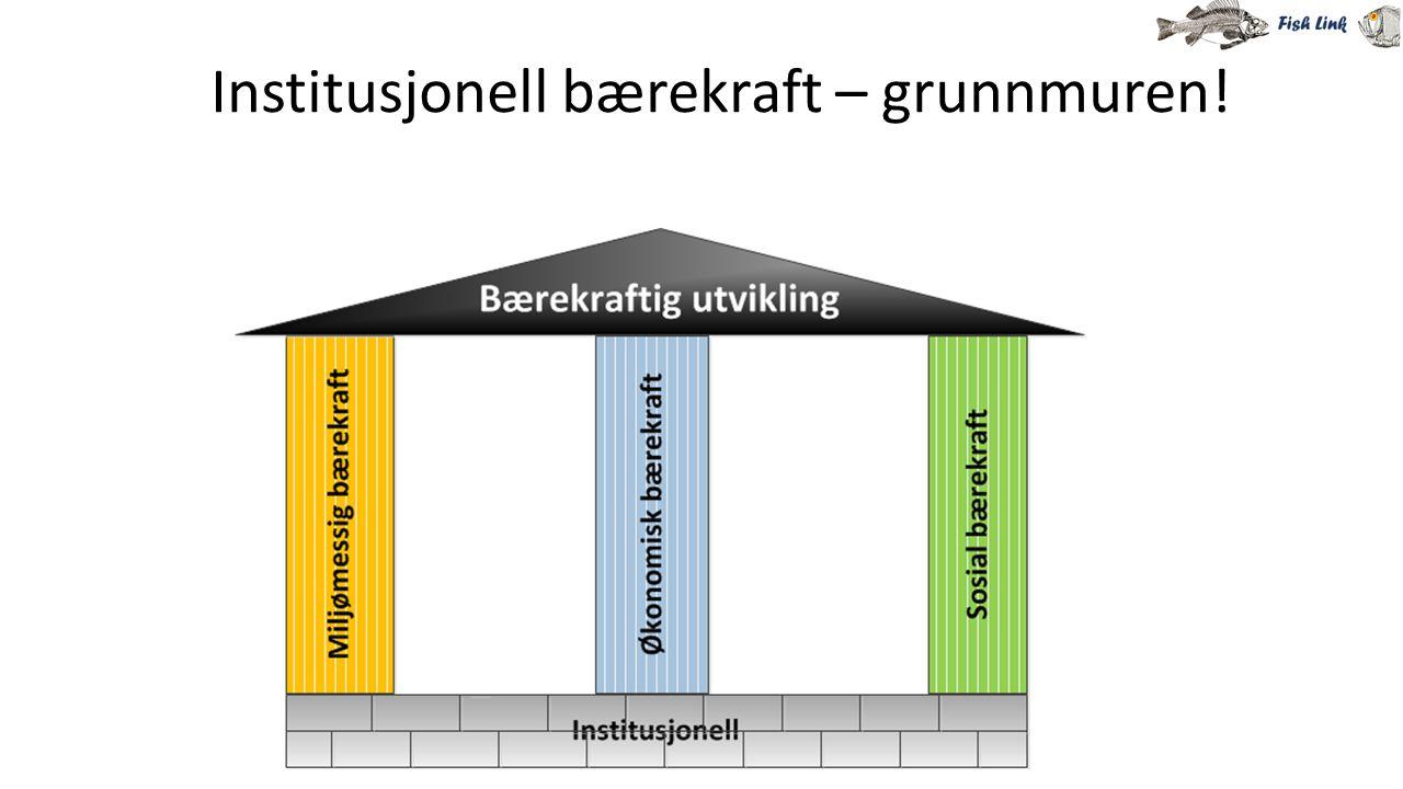 Institusjonell bærekraft – grunnmuren!