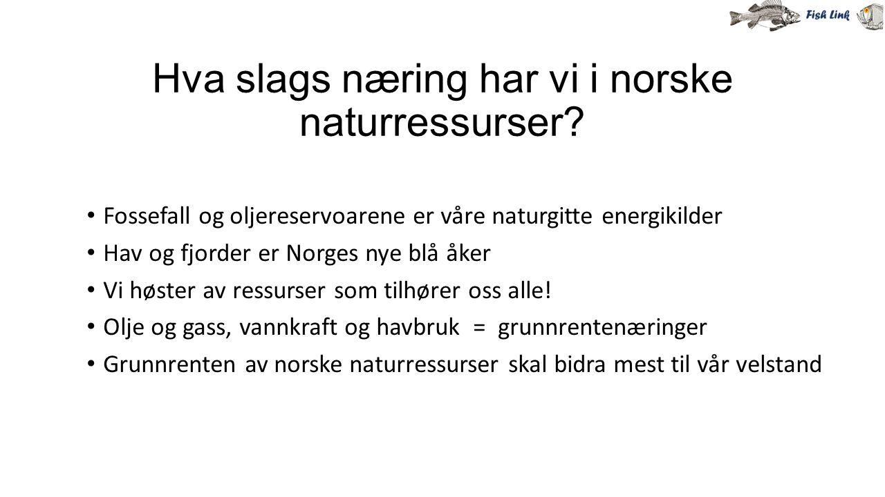 Hva slags næring har vi i norske naturressurser? Fossefall og oljereservoarene er våre naturgitte energikilder Hav og fjorder er Norges nye blå åker V