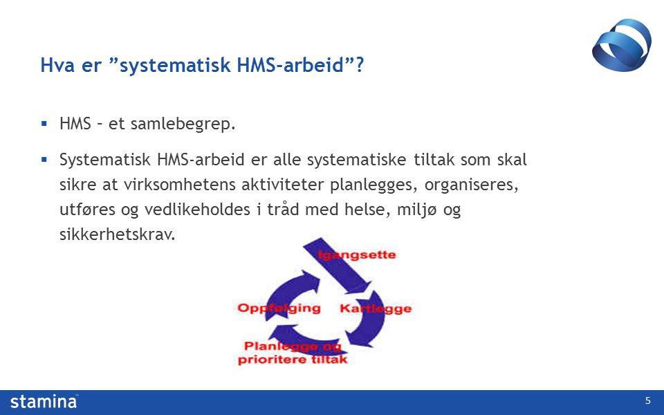 Internkontroll = HMS-styring  Internkontroll skal etablere effektiv kontroll over tilstander/hendelser som kan føre til skade på personer, ytre miljø og materiell og til tap av produksjon, informasjon og omdømme 6