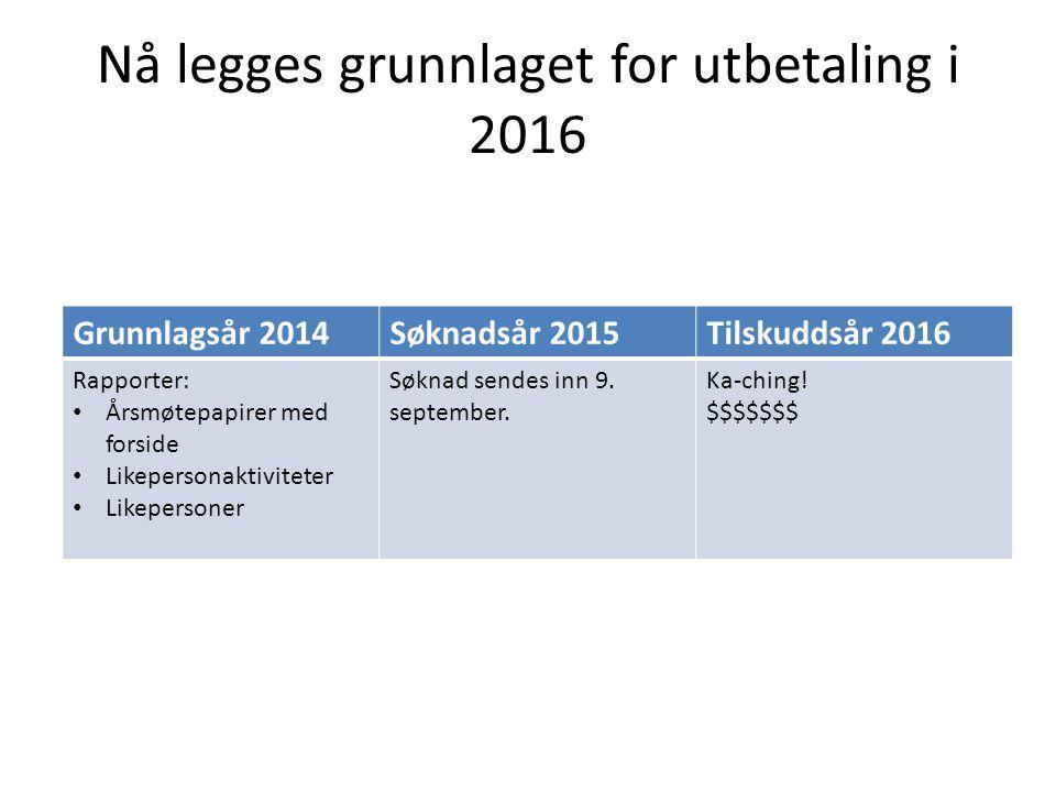 Nå legges grunnlaget for utbetaling i 2016 Grunnlagsår 2014Søknadsår 2015Tilskuddsår 2016 Rapporter: Årsmøtepapirer med forside Likepersonaktiviteter