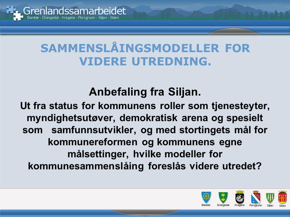 SAMMENSLÅINGSMODELLER FOR VIDERE UTREDNING. Anbefaling fra Siljan.