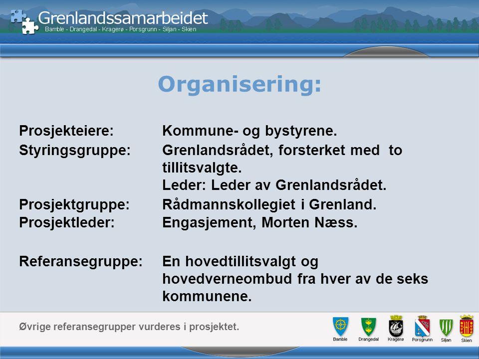 Organisering: Prosjekteiere: Kommune- og bystyrene.