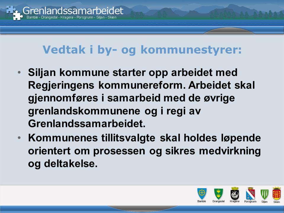 Vedtak i by- og kommunestyrer, forts.: Målet for arbeidet er å lage et godt beslutningsgrunnlag for senere politiske strukturvedtak.