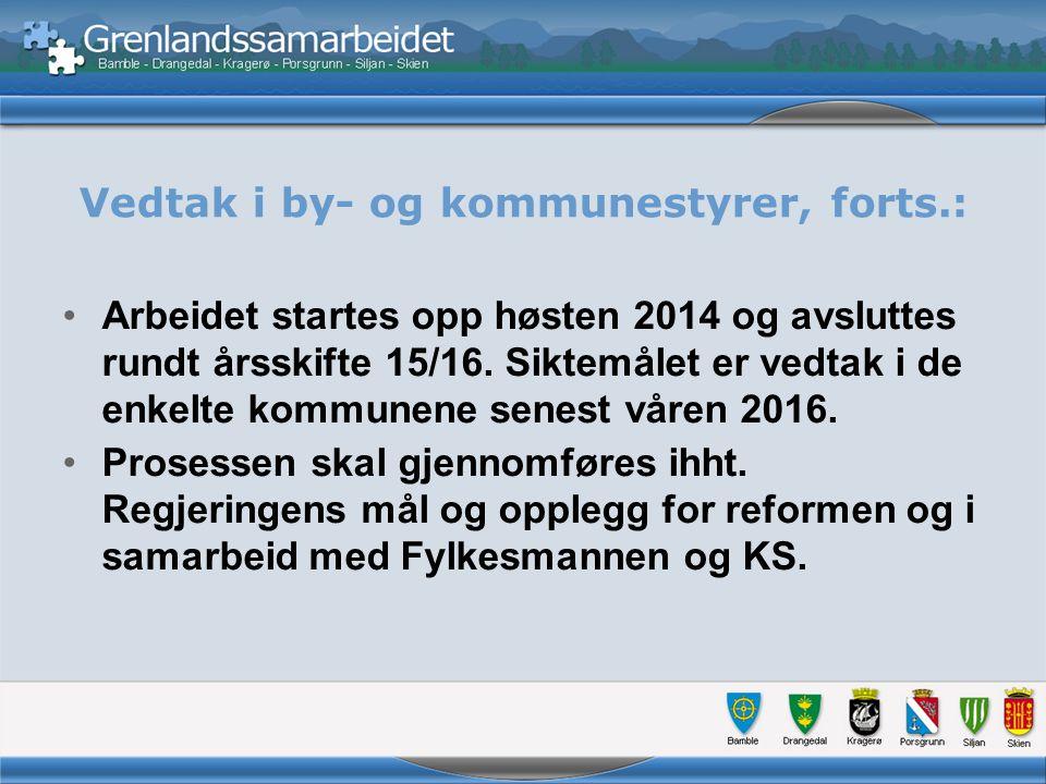 Vedtak i by- og kommunestyrer, forts.: Arbeidet startes opp høsten 2014 og avsluttes rundt årsskifte 15/16.