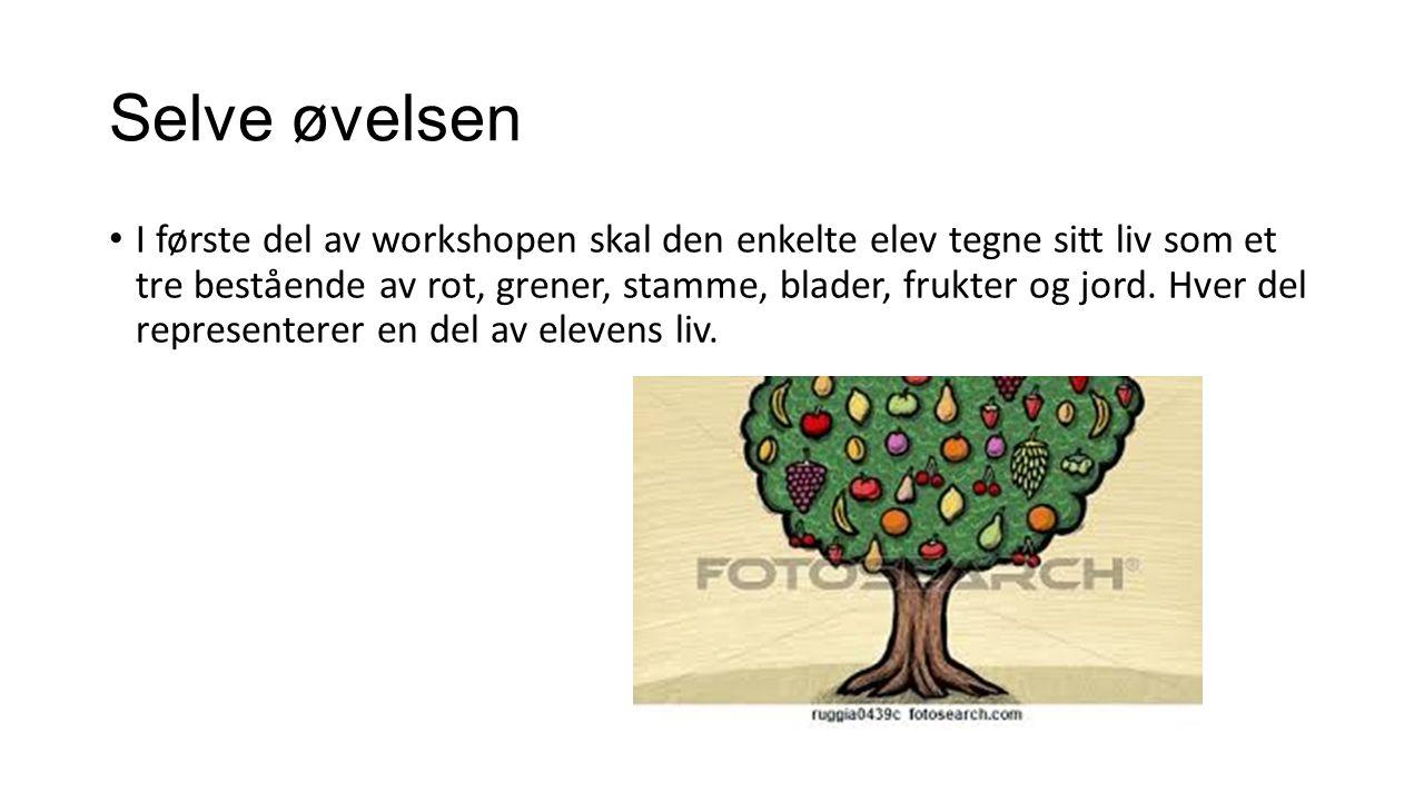 Selve øvelsen I første del av workshopen skal den enkelte elev tegne sitt liv som et tre bestående av rot, grener, stamme, blader, frukter og jord. Hv