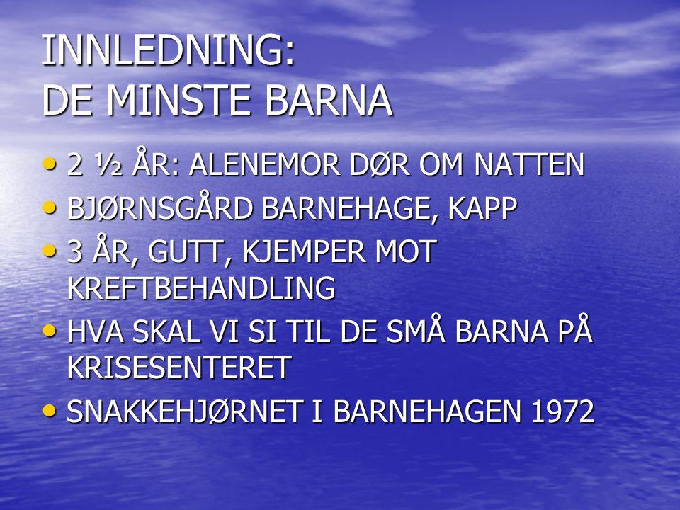 INNLEDNING: DE MINSTE BARNA 2 ½ ÅR: ALENEMOR DØR OM NATTEN 2 ½ ÅR: ALENEMOR DØR OM NATTEN BJØRNSGÅRD BARNEHAGE, KAPP BJØRNSGÅRD BARNEHAGE, KAPP 3 ÅR,