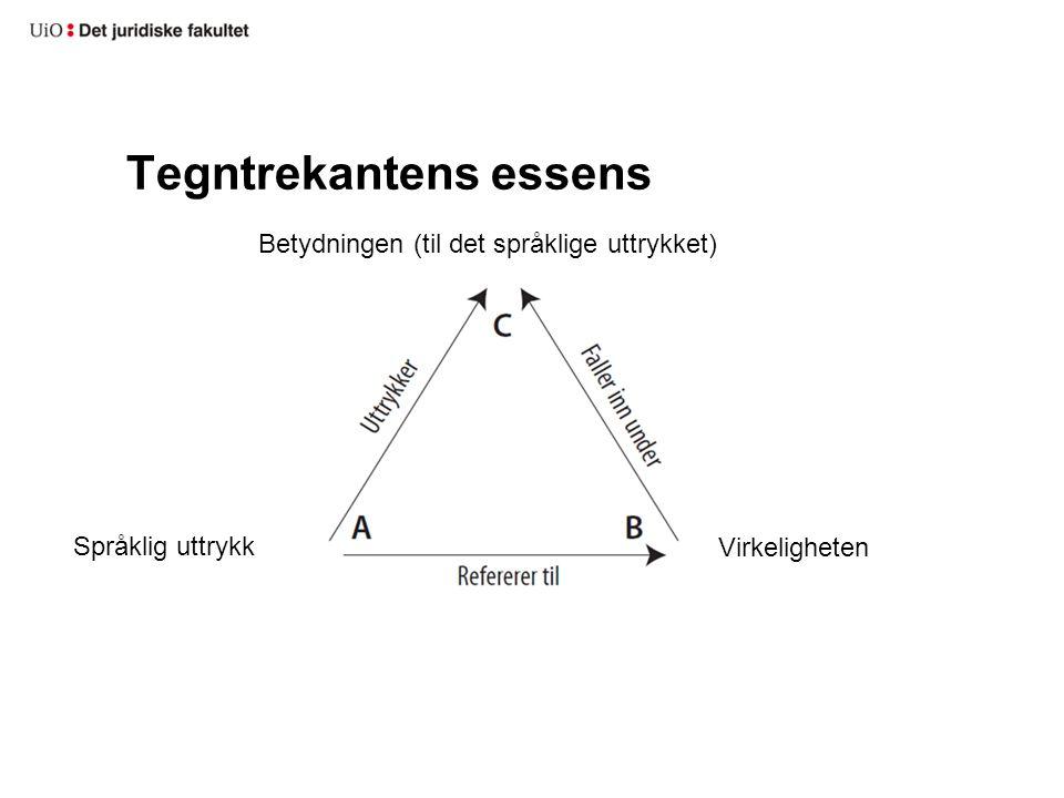 Tegntrekantens essens Betydningen (til det språklige uttrykket) Språklig uttrykk Virkeligheten