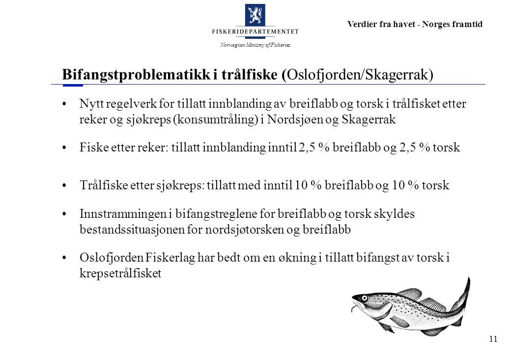 Norwegian Ministry of Fisheries Verdier fra havet - Norges framtid 11 Bifangstproblematikk i trålfiske (Oslofjorden/Skagerrak) Nytt regelverk for till