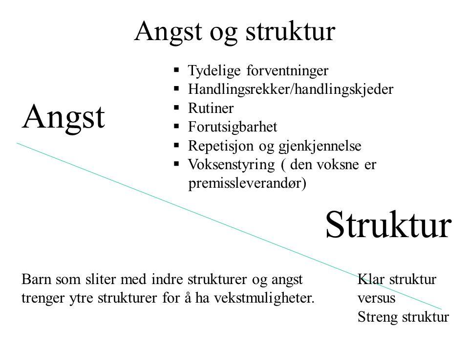Angst og struktur Angst Struktur  Tydelige forventninger  Handlingsrekker/handlingskjeder  Rutiner  Forutsigbarhet  Repetisjon og gjenkjennelse 