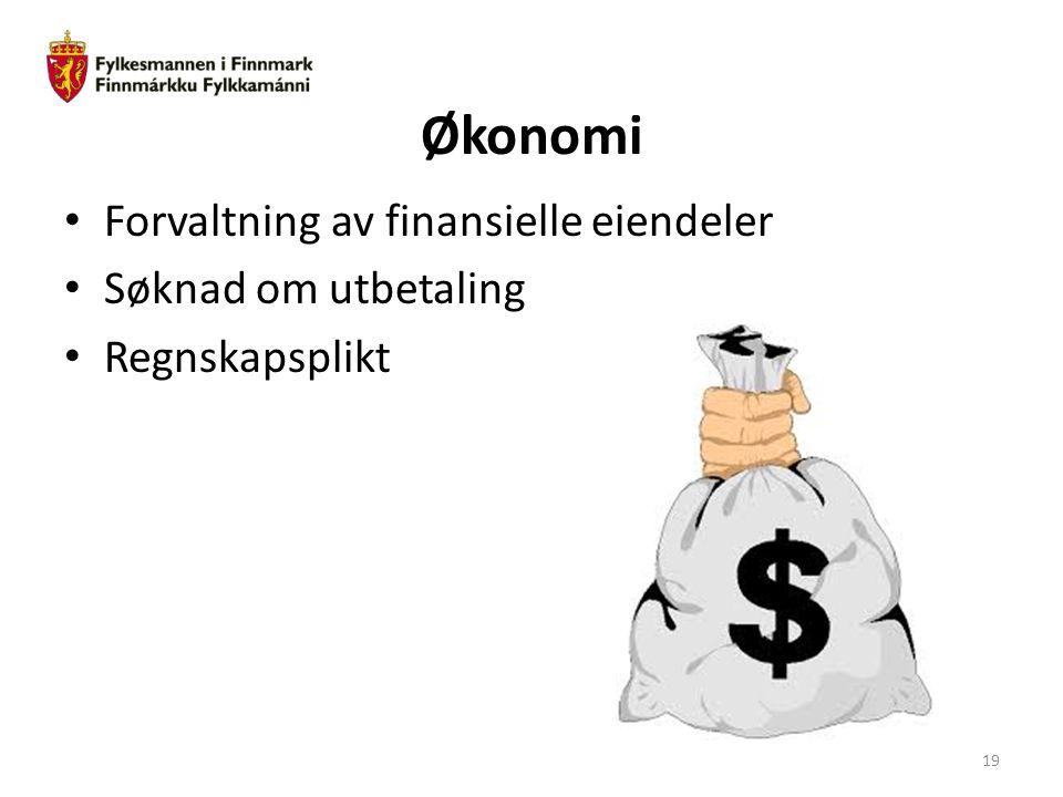 Økonomi Forvaltning av finansielle eiendeler Søknad om utbetaling Regnskapsplikt 19