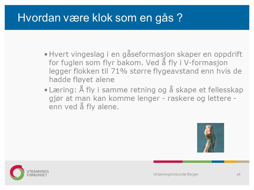 Utdanningsforbundet Bergens15 Hva er fagforeningsbevissthet .