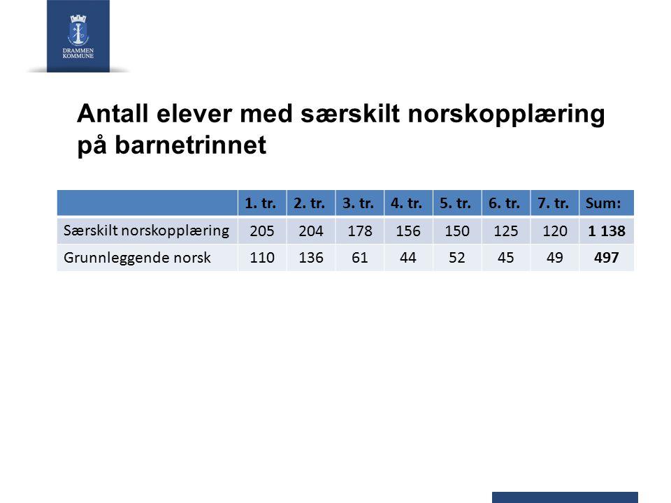Antall elever med særskilt norskopplæring på ungdomstrinnet 8.