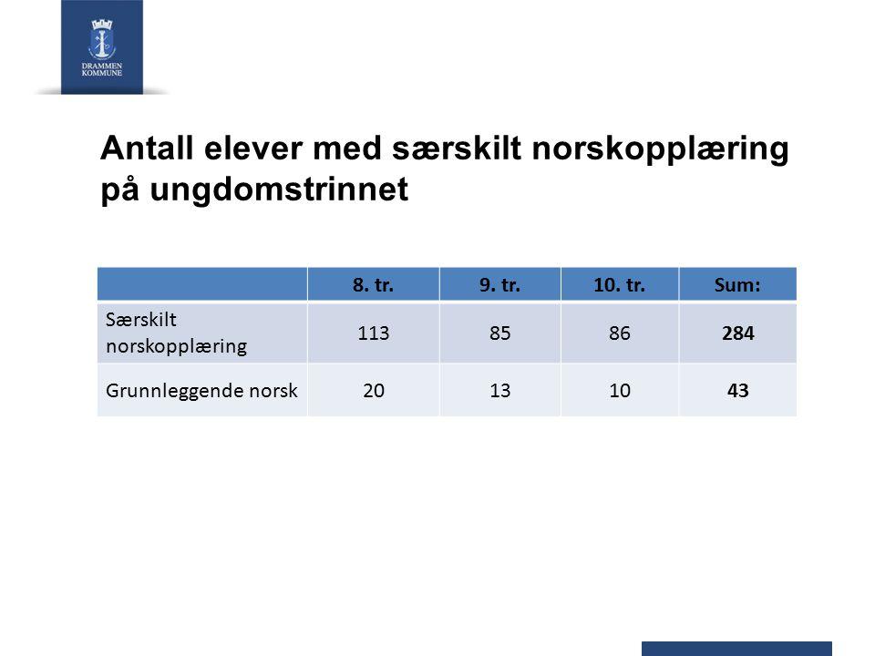Antall elever som får morsmålsopplæring og/ eller tospråklig fagopplæring/ tilrettelagt opplæring 1.