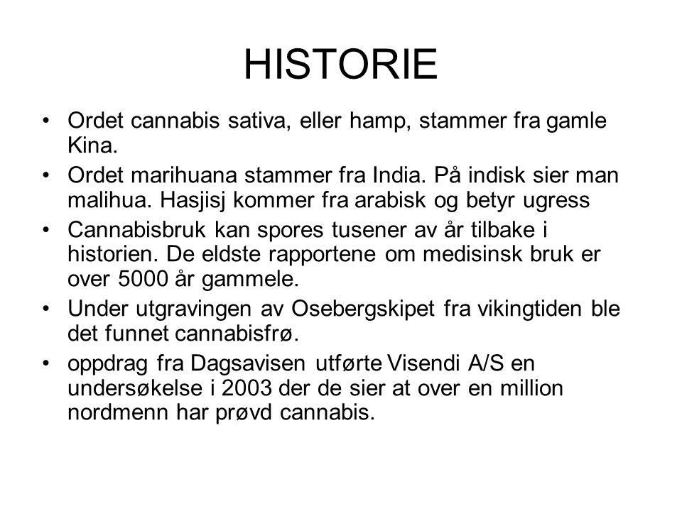 HISTORIE Ordet cannabis sativa, eller hamp, stammer fra gamle Kina. Ordet marihuana stammer fra India. På indisk sier man malihua. Hasjisj kommer fra