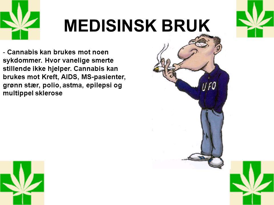 MEDISINSK BRUK - Cannabis kan brukes mot noen sykdommer. Hvor vanelige smerte stillende ikke hjelper. Cannabis kan brukes mot Kreft, AIDS, MS-pasiente