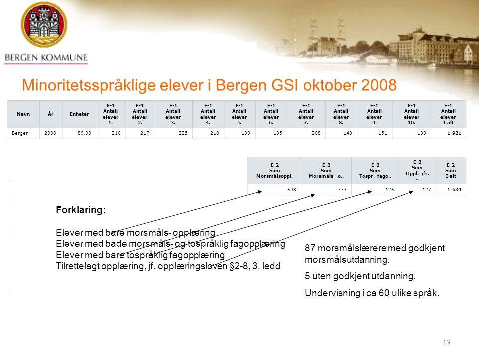 25. februar 200913 Minoritetsspråklige elever i Bergen GSI oktober 2008 NavnÅrEnheter E-1 Antall elever 1. E-1 Antall elever 2. E-1 Antall elever 3. E