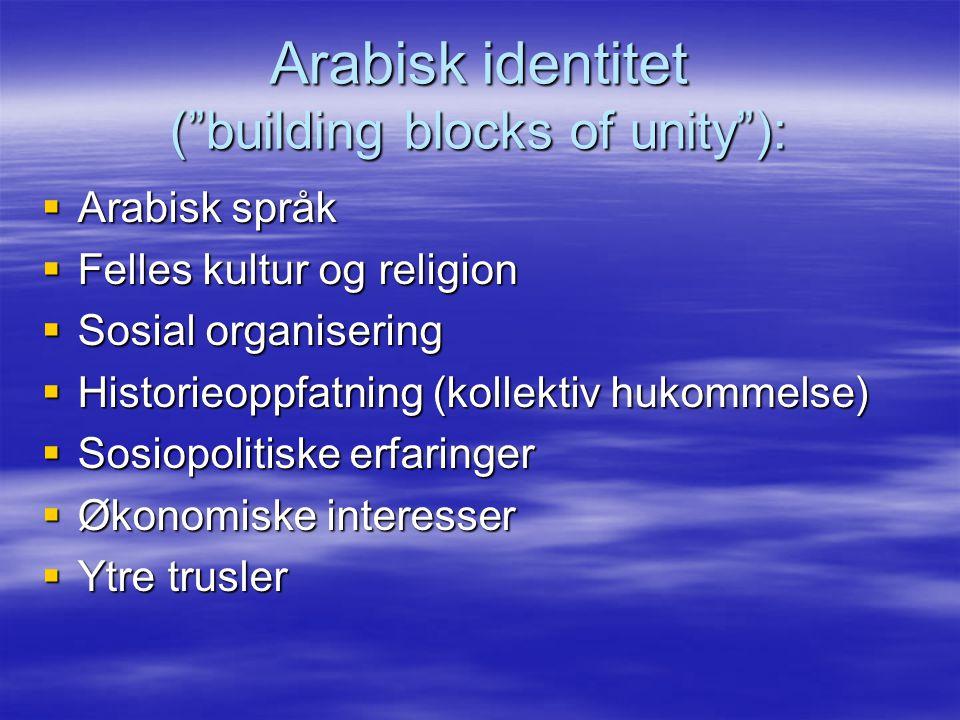 Arabisk identitet ( building blocks of unity ):  Arabisk språk  Felles kultur og religion  Sosial organisering  Historieoppfatning (kollektiv hukommelse)  Sosiopolitiske erfaringer  Økonomiske interesser  Ytre trusler