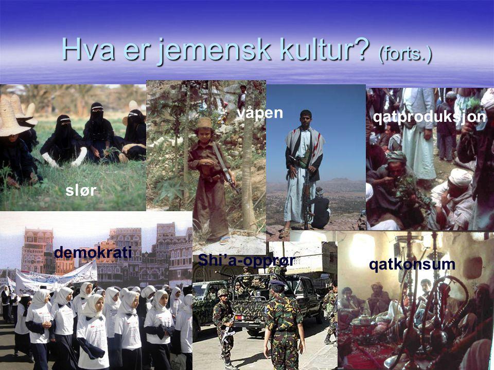 Hva er jemensk kultur? (forts.) slør våpen qatproduksjon demokrati Shi'a-opprør qatkonsum