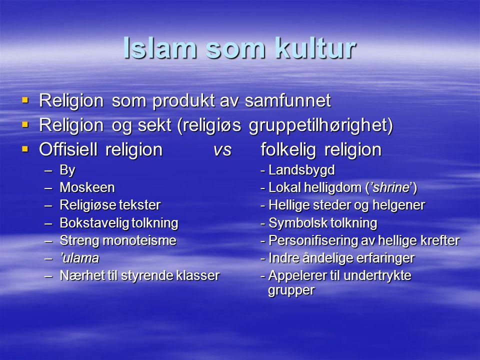 Islam som kultur  Religion som produkt av samfunnet  Religion og sekt (religiøs gruppetilhørighet)  Offisiell religion vs folkelig religion –By - L