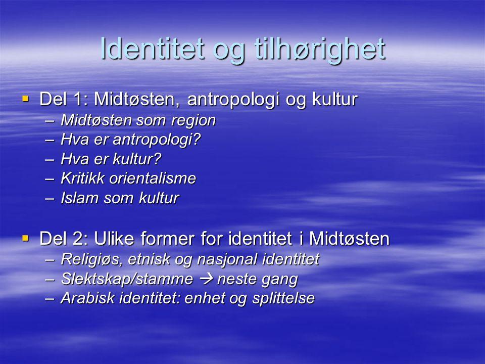 Identitet og tilhørighet  Del 1: Midtøsten, antropologi og kultur –Midtøsten som region –Hva er antropologi? –Hva er kultur? –Kritikk orientalisme –I