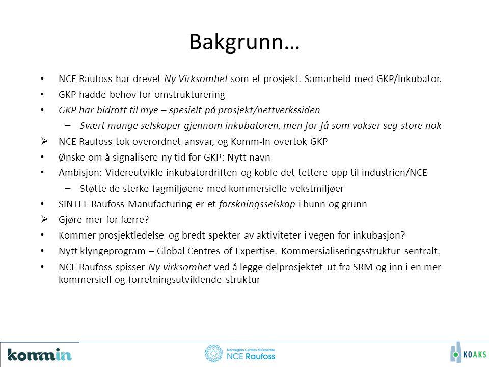 Bakgrunn… NCE Raufoss har drevet Ny Virksomhet som et prosjekt.