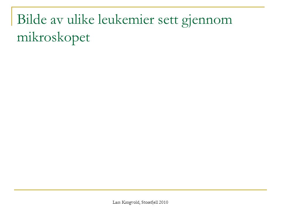 Lars Krogvold, Storefjell 2010 Bilde av ulike leukemier sett gjennom mikroskopet