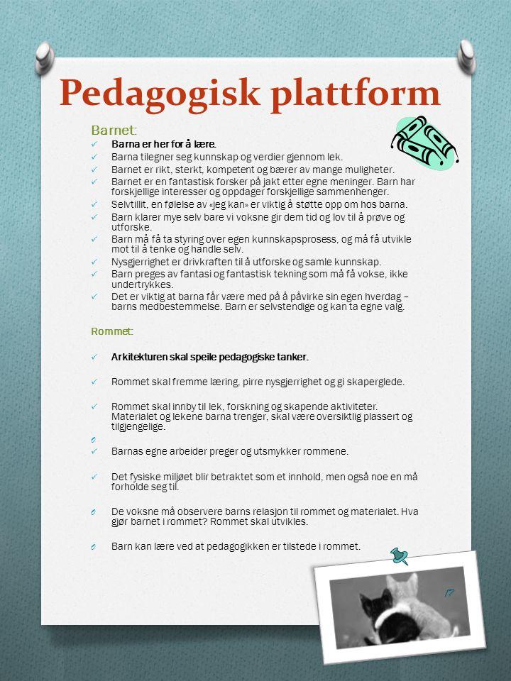 Pedagogisk plattform Barnet: Barna er her for å lære.