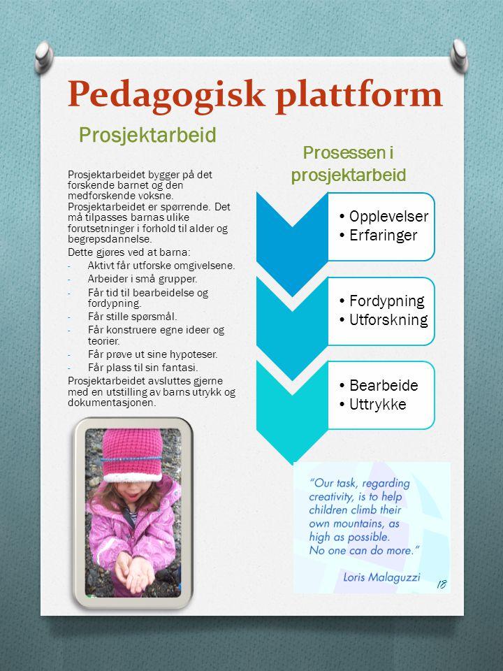 Pedagogisk plattform Prosjektarbeid Prosessen i prosjektarbeid Prosjektarbeidet bygger på det forskende barnet og den medforskende voksne.