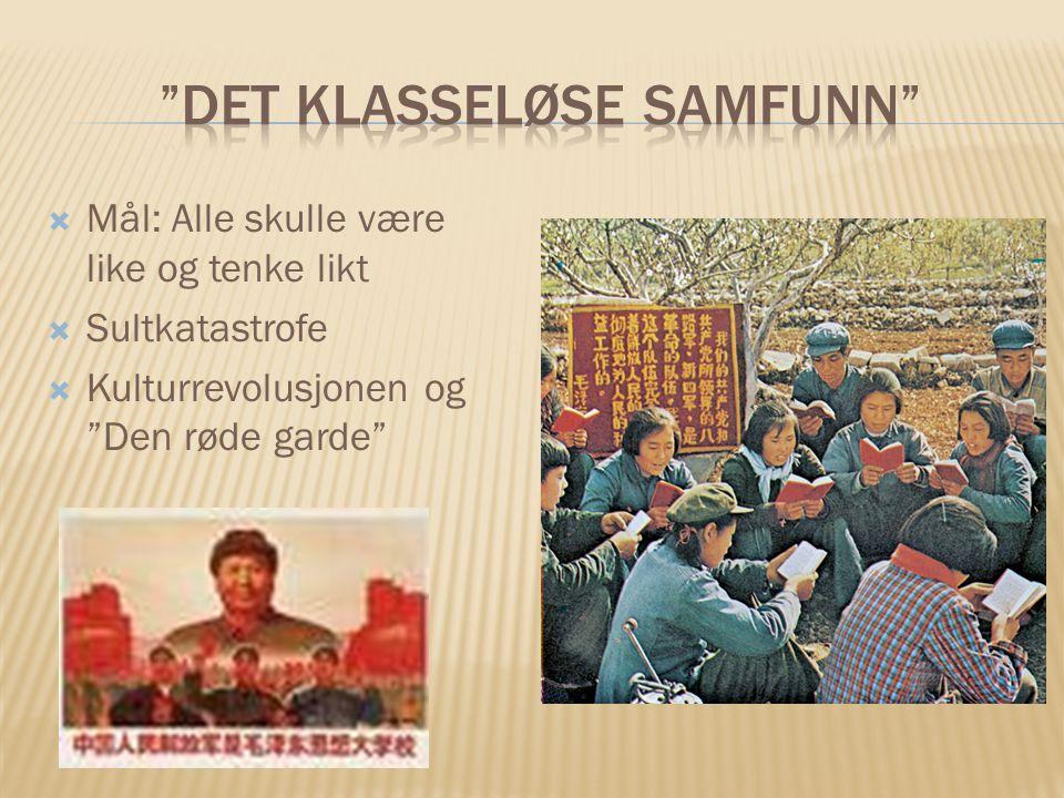 """ Mål: Alle skulle være like og tenke likt  Sultkatastrofe  Kulturrevolusjonen og """"Den røde garde"""""""