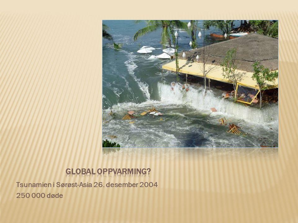 Tsunamien i Sørøst-Asia 26. desember 2004 250 000 døde