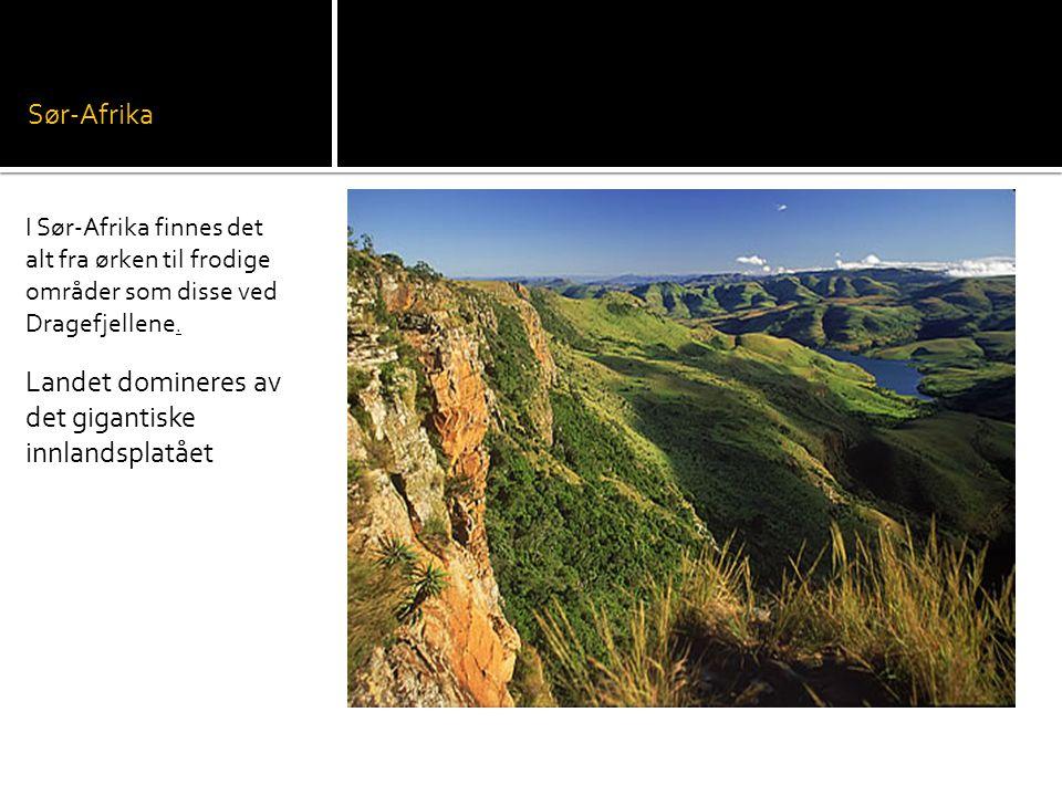 Sør-Afrika I Sør-Afrika finnes det alt fra ørken til frodige områder som disse ved Dragefjellene.