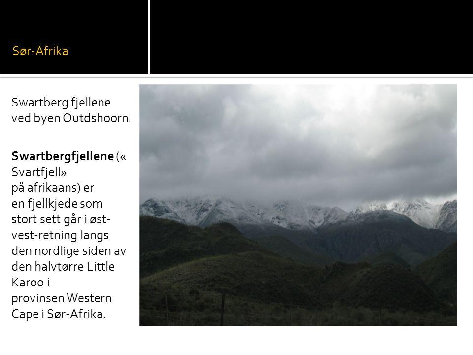 Sør-Afrika Swartberg fjellene ved byen Outdshoorn.