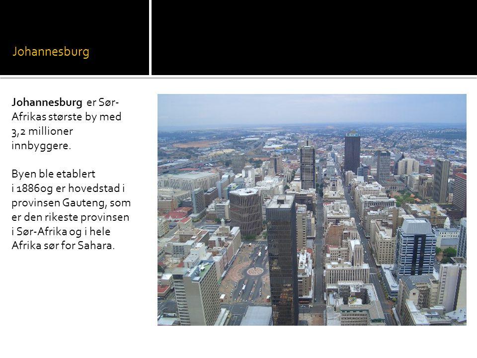 Johannesburg Johannesburg er Sør- Afrikas største by med 3,2 millioner innbyggere.