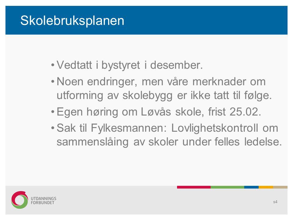 Skolebruksplanen Vedtatt i bystyret i desember.