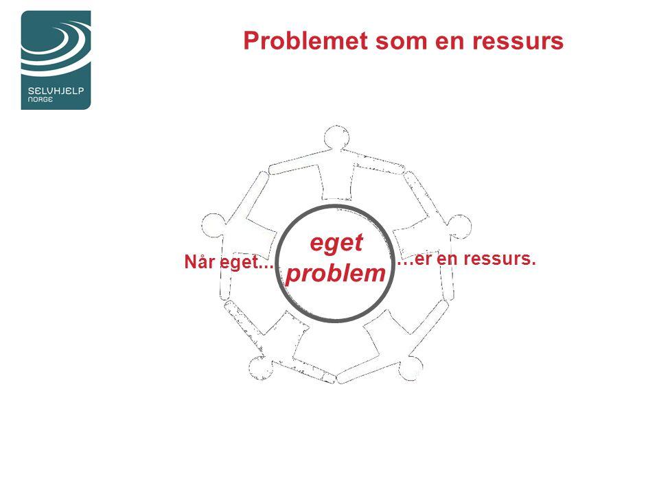 Problemet som en ressurs eget problem Når eget... …er en ressurs.