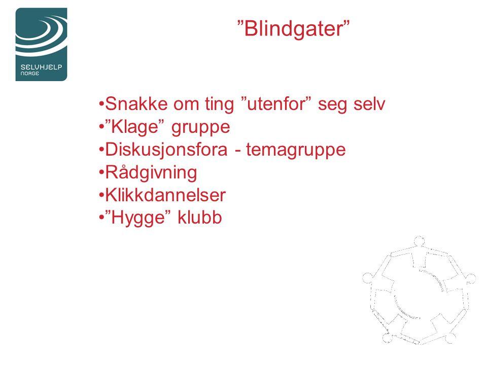 Snakke om ting utenfor seg selv Klage gruppe Diskusjonsfora - temagruppe Rådgivning Klikkdannelser Hygge klubb Blindgater