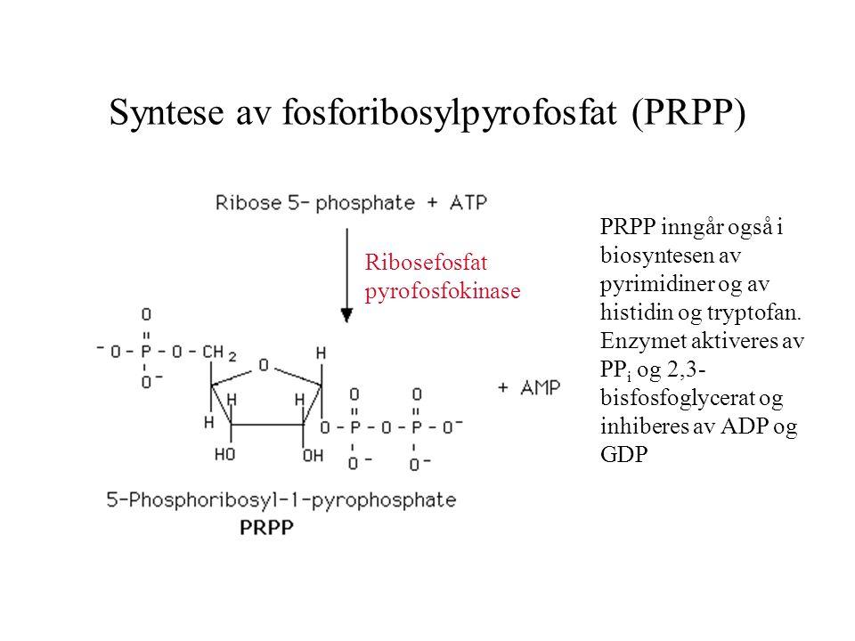 Syntese av fosforibosylpyrofosfat (PRPP) PRPP inngår også i biosyntesen av pyrimidiner og av histidin og tryptofan.
