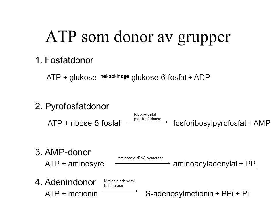 ATP som donor av grupper 1.Fosfatdonor ATP + glukose heksokinase glukose-6-fosfat + ADP 2.