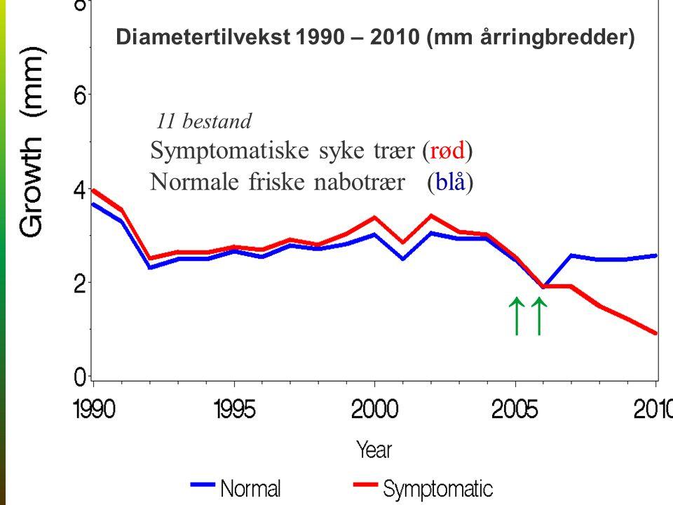 ↑↑ Diametertilvekst 1990 – 2010 (mm årringbredder) 11 bestand Symptomatiske syke trær (rød) Normale friske nabotrær (blå)