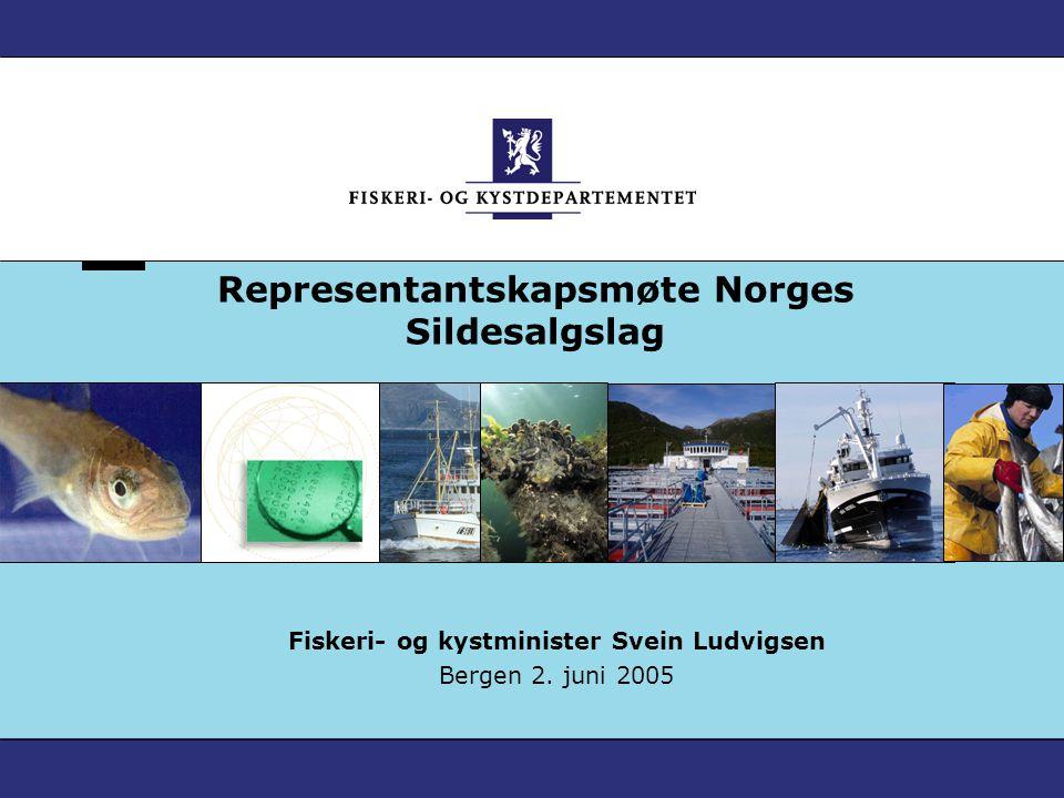 Representantskapsmøte Norges Sildesalgslag Fiskeri- og kystminister Svein Ludvigsen Bergen 2. juni 2005