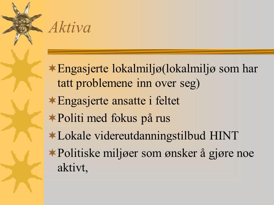 No 46  Lokalt rehabiliteringstiltak for rusavhengige  Brukerens egen arena  Samarbeidsarena for Sosial- og Psykiatritjenesten, 2.