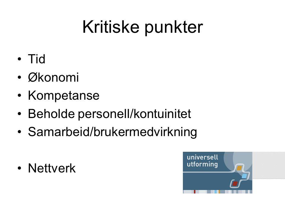 Kritiske punkter Tid Økonomi Kompetanse Beholde personell/kontuinitet Samarbeid/brukermedvirkning Nettverk